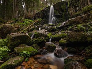 Фотографии Франция Камень Водопады Леса Утес Мох Cascade de Merelle Природа