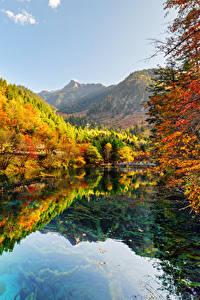 Картинки Цзючжайгоу парк Китай Парки Осень Леса Озеро Природа