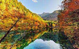 Картинки Цзючжайгоу парк Китай Парки Осень Леса Озеро