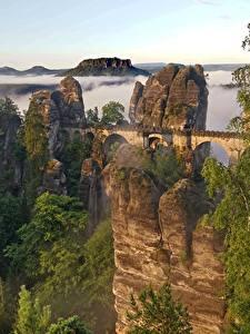Обои Горы Мост Швейцария Скале Тумана Дерево Bastei Cliffs, Saxon Switzerland Природа