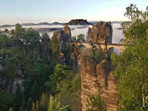 Обои Горы Мост Швейцария Скале Тумана Дерево Bastei Cliffs, Saxon Switzerland