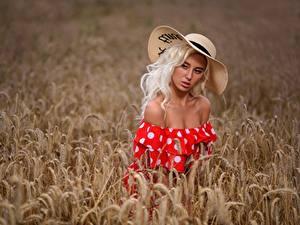 Обои Поля Пшеница Блондинки Фотомодель Колосок Шляпы Платья Красивая Margo, Dmitry Medved девушка