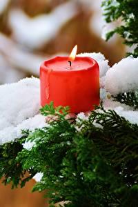 Картинки Зима Свечи Пламя Снег Ветвь