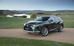 Картинки Lexus Зеленый Металлик 2019 RX 350 авто