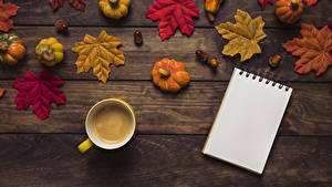 Фото Осенние Тыква Кофе Доски Листья Чашке Блокнот Еда