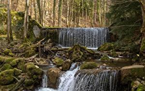 Картинки Лес Камни Водопады Мох Природа