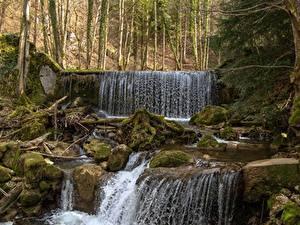 Картинки Леса Камни Водопады Мох Природа