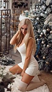 Картинки Новый год Красивые Платье Блондинка Nikolay Kashuba Девушки