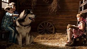 Фото Собака Аляскинский маламут Втроем Мальчишка Девочки Сено ребёнок Животные