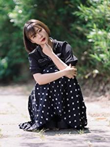 Фото Азиатка Поза Сидящие Платье Шатенки Миленькие девушка