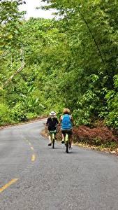 Обои для рабочего стола Дороги Лес Асфальт Велосипеды Двое Bocas Del Toro, Panama Природа