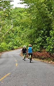 Фото Дороги Лес Асфальт Велосипеды Двое Bocas Del Toro, Panama Природа