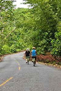 Фото Дороги Лес Асфальт Велосипеды Двое Bocas Del Toro, Panama