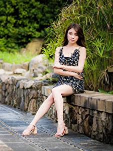 Картинки Азиатка Сидящие Ног Платье Руки Смотрят Шатенки Девушки