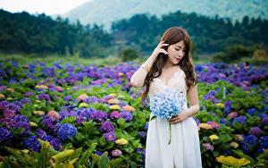 Фотография Азиаты Боке Шатенки Платья Девушки