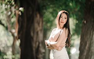 Картинки Азиаты Боке Поза Руки Шатенка девушка