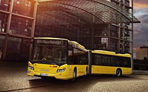 Фотография Сканиа Автобус Желтый 2012-18 Citywide LFA