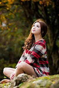 Фото Азиаты Сидящие Размытый фон Шатенки молодые женщины
