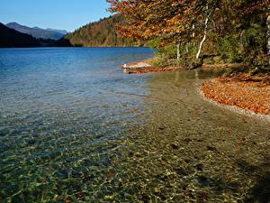 Фото Германия Озеро Берег Осенние Konigsee lake Природа