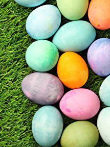 Обои Праздники Пасха Трава Яйцами