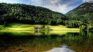 Картинки Гора Лес Австрия Озеро Пейзаж Hintersteinersee lake, Tyrol