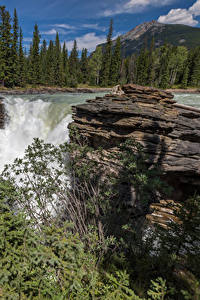 Картинки Канада Водопады Утес Ель Радуга Alberta