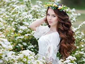 Фотографии Цветущие деревья Шатенка Красивые Волосы Смотрит Девушки