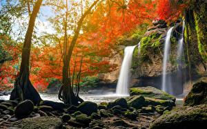 Фото Таиланд Парки Водопады Камень Дерево Скала Мха Heo Suwat Waterfall Khao Yai National Park Природа
