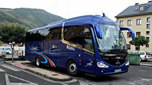 Фотографии Сканиа Автобус Синий Металлик IRIZAR i6 SCANIA