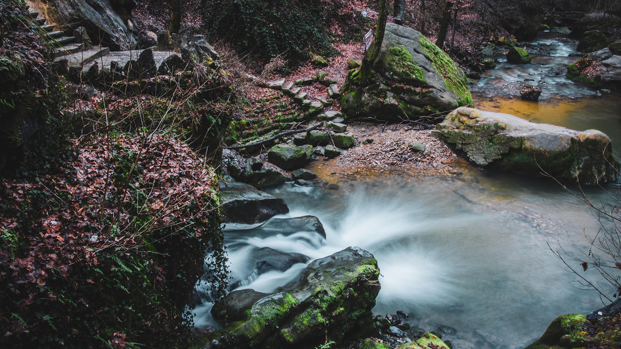 Обои для рабочего стола Люксембург Schiessentumpel Cascade Природа Водопады мха Камень 2560x1440 Мох мхом Камни