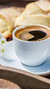 Фотографии Кофе Ромашки Выпечка Чашка Блюдце Пища