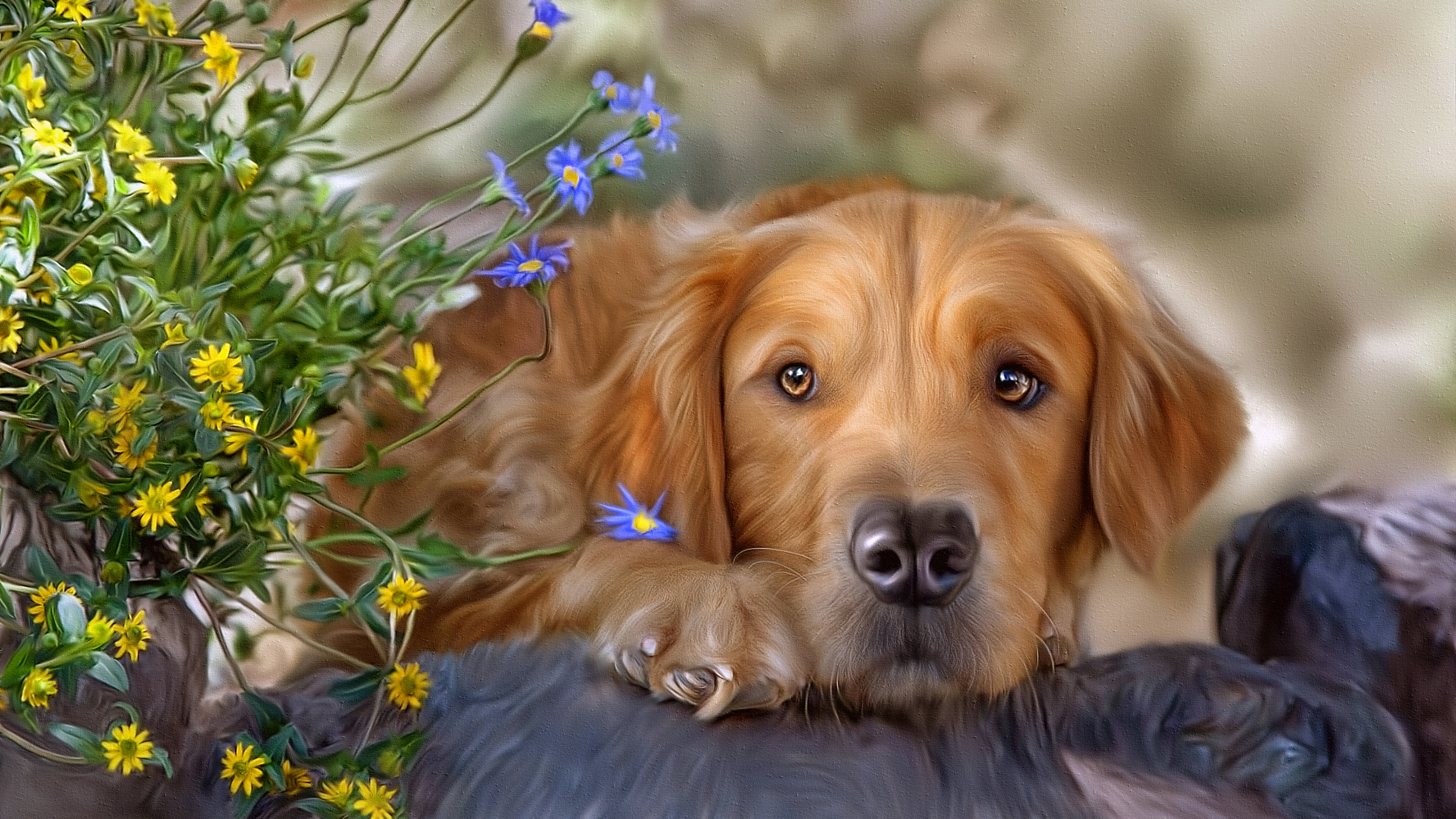 dog wallpapers full hd wallpaper search - HD 1400×1050