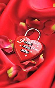 Обои для рабочего стола День святого Валентина Красная Серце Лепестки Висячий замок