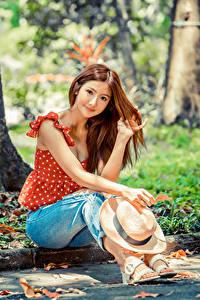 Обои Азиатки Сидящие Джинсов Шляпы Шатенки Смотрит Блузка девушка