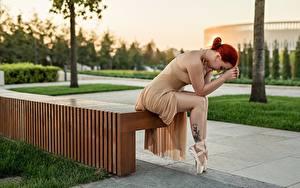 Картинка Georgiy Dyakov Рыжая Сидя Скамейка Ног Платья Позирует Балете молодые женщины