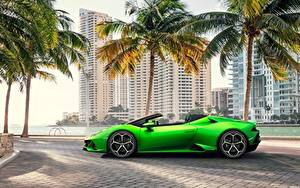 Обои Ламборгини Сбоку Родстер Зеленая Spyder Evo Huracan автомобиль