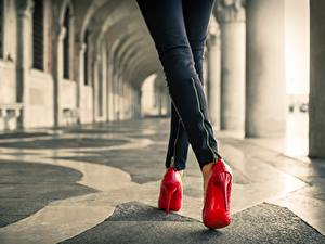 Фотография Крупным планом Ноги Красные Красный Девушки
