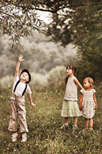 Картинка Три Мальчишки Девочка Трава ребёнок