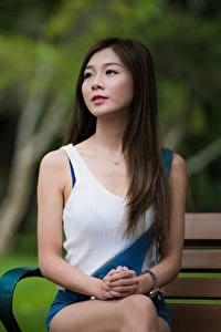 Картинки Азиатки Боке Шатенка Сидя Руки Взгляд Девушки