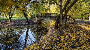 Фото Россия Санкт-Петербург Парки Речка Мосты Осенние Листья Деревья Park Ekaterinhof
