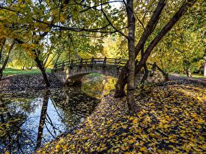 Фото Россия Санкт-Петербург Парки Речка Мосты Осенние Листья Деревья Park Ekaterinhof Природа