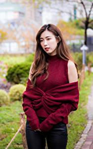 Картинки Азиаты Шатенки Свитера Взгляд Боке молодые женщины