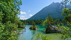 Фотографии Германия Гора Озеро Лес Камень Бавария На ветке