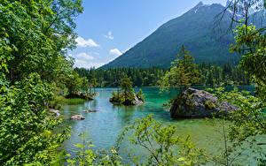 Фотографии Германия Гора Озеро Лес Камень Бавария На ветке Природа