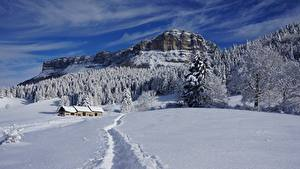Фотография Зима Здания Леса Гора Пейзаж Снега Тропинка Утес