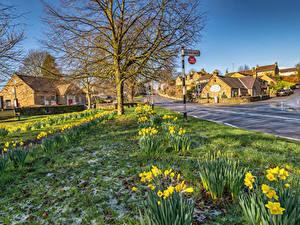 Фотографии Великобритания Здания Нарциссы Улица Baslow  Derbyshire