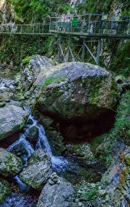 Фото Франция Мост Камни Водопады Каньона Мха Gorges de la Fou Природа