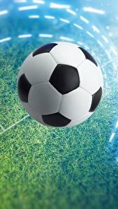 Обои для рабочего стола Футбол Мяч Газоне Спорт