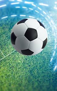 Фотография Футбол Мяч Газоне Спорт