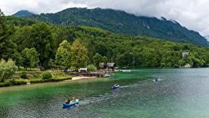 Картинка Словения Озеро Гора Лес Берег Лодки Lake Bohinj